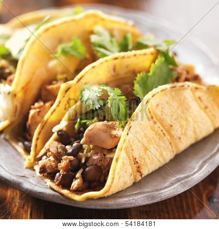 authentic mexican tacos in yellow corn shell with chicken