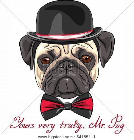 Vector Sketch Hipster Dog Pug Breed