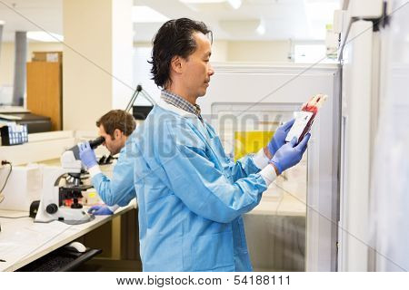 Medical staff in lab inspecting bag of red blood cells