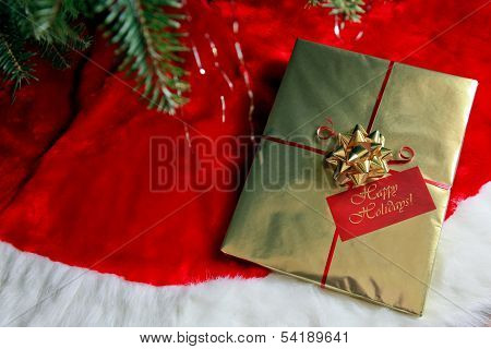 A Beautiful Gift Under The Christmas Tree