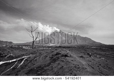 After A Volcano Erupts