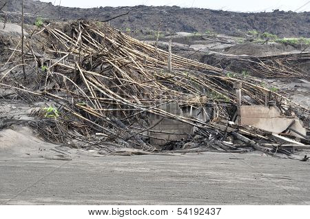 Houses and Trees Damaged by Pyroclastic