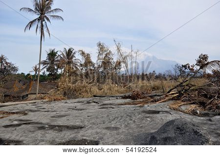 Village damaged by natural disaster