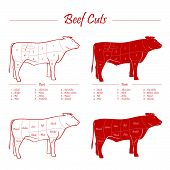 image of cattle breeding  - Beef meat cuts scheme - JPG