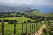 stock photo of basque country  - Green Fields On Biscay coast Near Gorliz - JPG