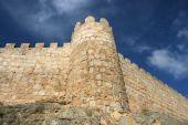 Medieval Walls poster