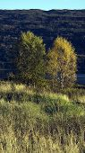 stock photo of landforms  - Countryside landforms with shade in outdoor scene - JPG