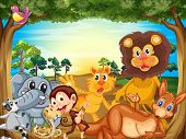 stock photo of jungle snake  - Illustration of a group of animals relaxing under the tree - JPG