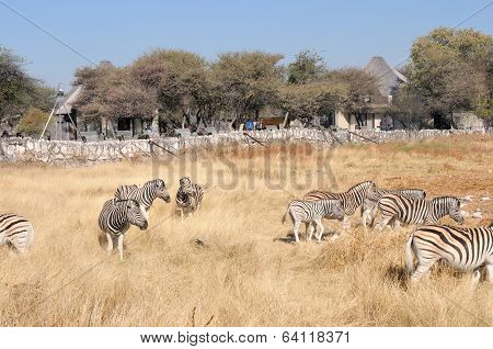 View At The Waterhole At The Okaukeujo Rest Camp, Etosha National Park, Namibia