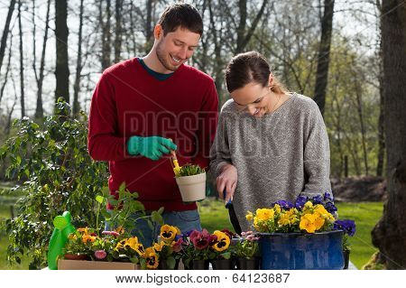 Couple Enjoying Garden Work