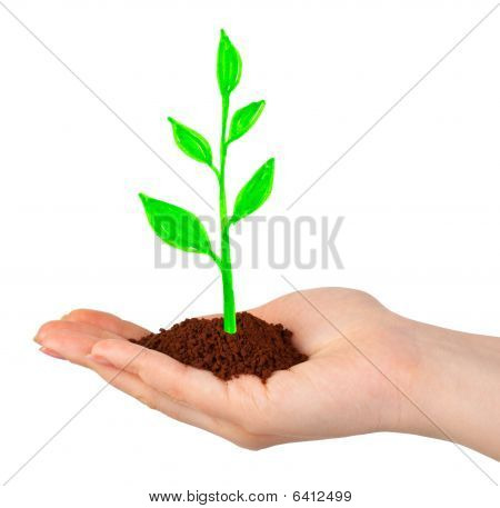 Hand And Drawing Plant