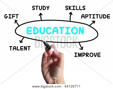 Education Diagram Shows Skills Study And Learning