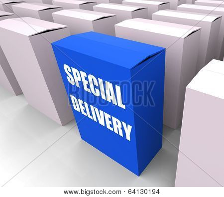 Special Delivery Box Shows Secure And Important Shipping