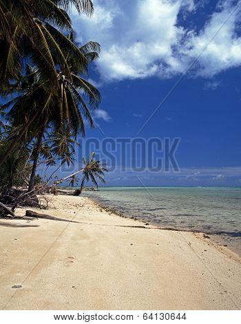 Beach, Pigeon Point, Tobago.