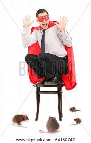 Scared man in superhero costume attacked by rats isolated on white background