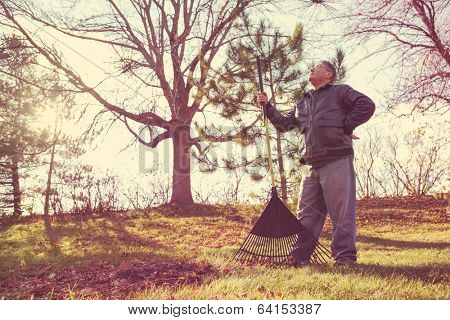 Man resting while raking leaves