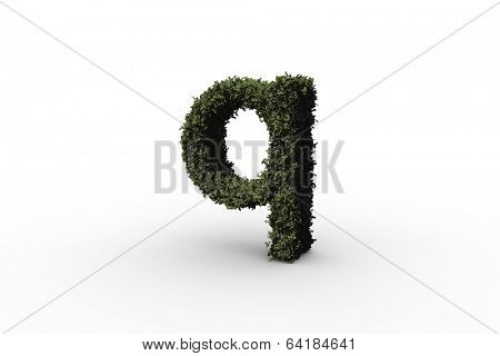 Lower case letter q made of leaves on white background