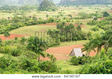 Aerial view of the Vinales Valley in Cuba, a tourist landmark  known worldwide for its beauty and the quality of its tobacco