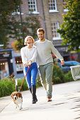 picture of dog park  - Couple Taking Dog For Walk In City Park - JPG