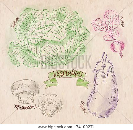 Vegetables Cabbage, Eggplant, Radishes, Mushrooms Country