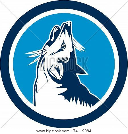 Red Fox Head Howling Circle Retro