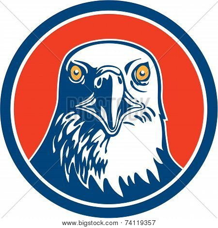 American Bald Eagle Head Circle Retro