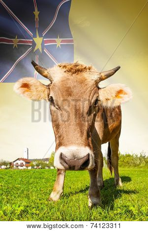 Cow With Flag On Background Series - Niue