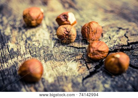 Hazelnuts On Aged Wood