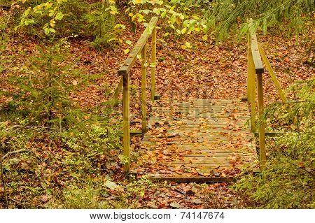 Walkway Over Ditch