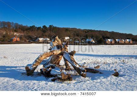 Tree Stump In A Snowy Landscape