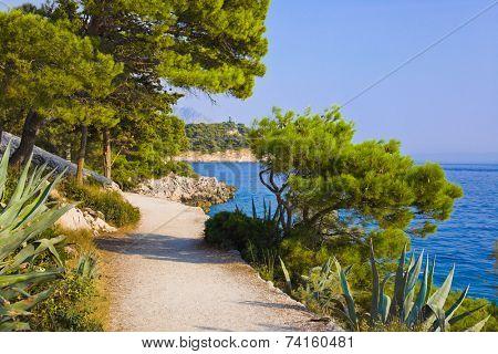 Pathway at Makarska, Croatia - travel background