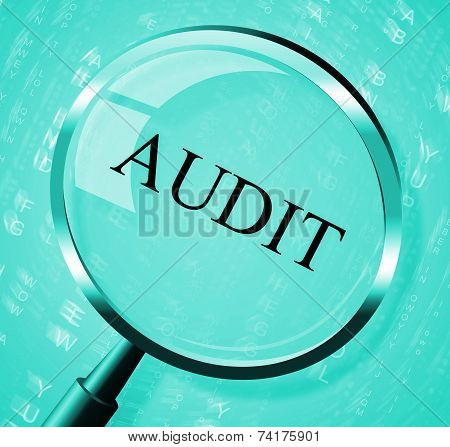 Audit Magnifier Shows Searching Auditing And Magnification