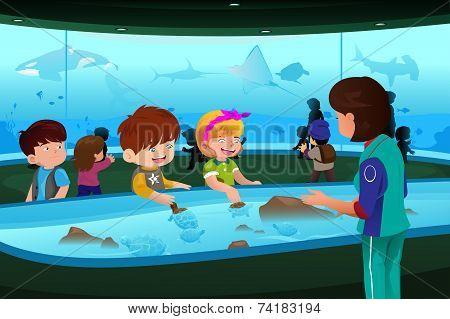 Kids On Field Trip To Aquarium