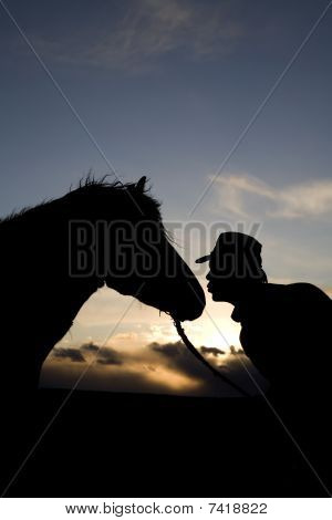 Man Kissing Horse