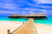 picture of kuramathi  - Water bungalows at a tropical island  - JPG