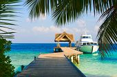 foto of kuramathi  - Yacht moored shot through a opening in the trees - JPG