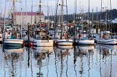 picture of dock  - Commercial and private fishing boats sitting at dock in Charleston Oregon on the Pacific Ocean near Coos Bay