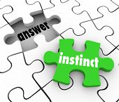 picture of intuition  - Instinct word on a green puzzle piece to find solution to problem with gut feeling or intuition - JPG