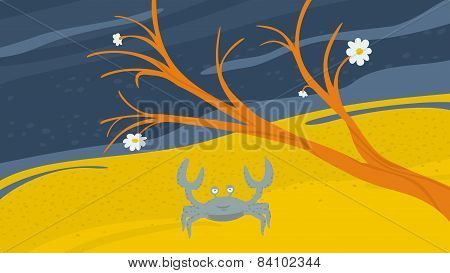 Crab on the Shore