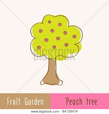 Garden Fruit Trees - Single Tree