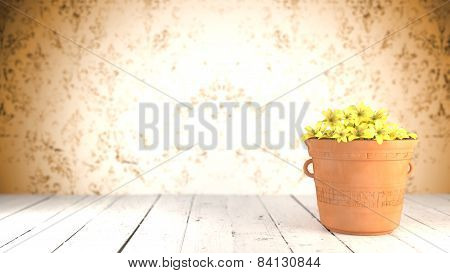 Yellow Flowers in a terracotta pot