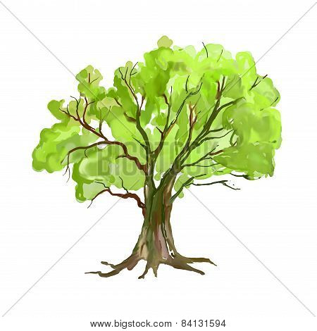 Tree vector illustration  hand drawn  painted