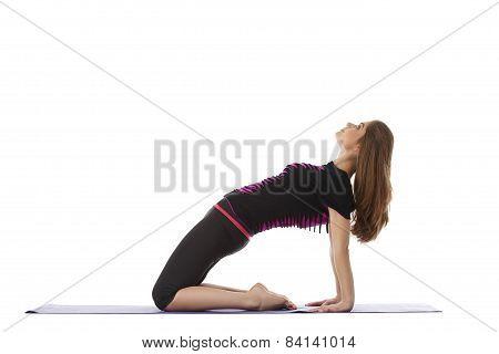 Studio shot of charming woman doing yoga