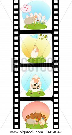 Set of blank film colorful strips with sheep