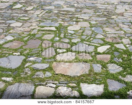 Rustic Garden Pavement Of Stones And Grass
