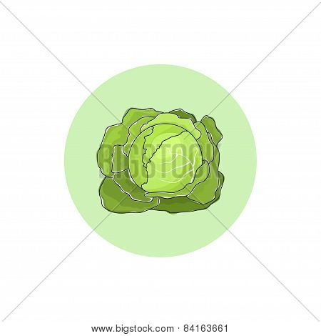 Icon white cabbage vegetable  , vector illustration