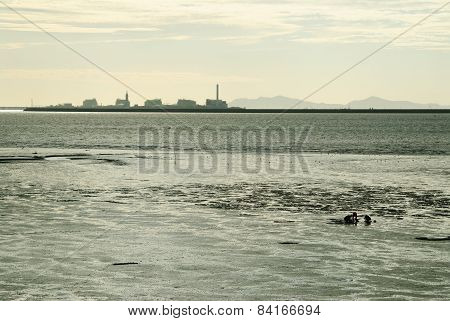 Mud Flat And People With Factory Silhouette