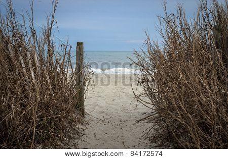 Atlantic Ocean Path