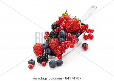 Fresh fruits in scoop.