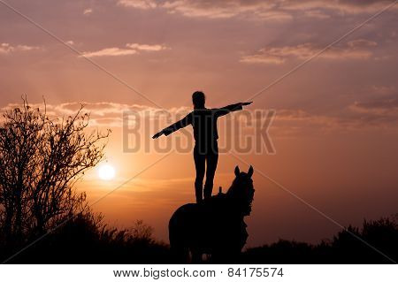 Girl standing on a horse with raised hands to the side like an airplane wing. Looks into the distanc